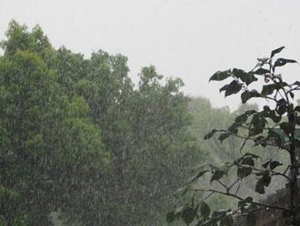 台風16号が通過後、雨漏りのご相談を多くいただきました